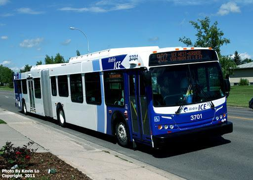 Airdrie Bus